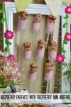 Raspberry Parfaits with Mini Raspberry Muffins