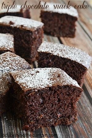 Triple Chocolate Snack Cake | A moist and easy treat for the whole family.