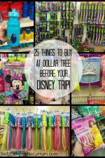 25 Things To Buy At Dollar Tree BEFORE Your Disney Trip