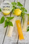 Organic Lemonade Fun Pops | These fresh fun pops are super easy to make. I love that they aren't full of sugar and things I can't pronounce. The great thing about these pops are how easy they are to customize to your families tastes. What makes them fun are the nifty little zip top bags you make them in.