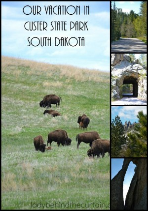 Our Vacation in Custer State Park South Dakota | Voted the BEST drive you'll EVER take and the perfect kid friendly summer vacation!