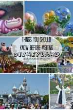 Things You Should Know Before Visiting Disneyland