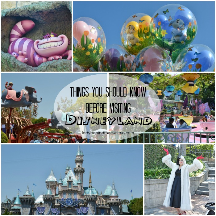 Things-You-Should-Know-Before-Visiting-Disneyland-7