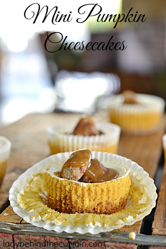 Mini Pumpkin Cheesecakes | Little bites of creamy pumpkin flavored cheesecake topped with a homemade caramel sauce and sugared pecans....now that a dessert fit for a celebration!