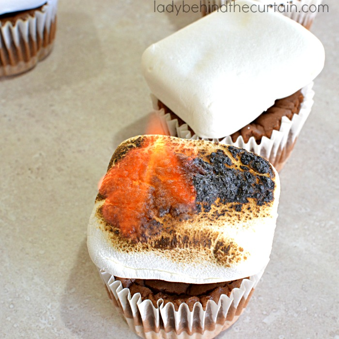 Mini S'more Cheesecakes | Bring the campfire into your home with these fun and delicious S'more Cheesecakes!