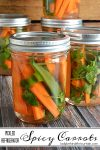 Pickled Refrigerator Spicy Carrots | easy recipe, picnic recipe, hostess gift idea, side dish