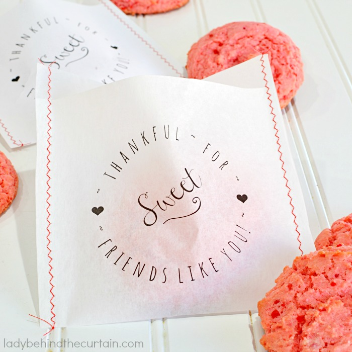 DIY Cookie Bag Party Favor