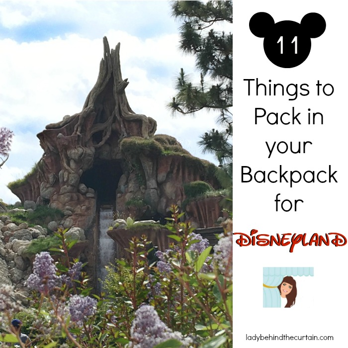 11 Things to Pack in your Backpack for Disneyland