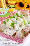 Creamy Ranch Potatoes
