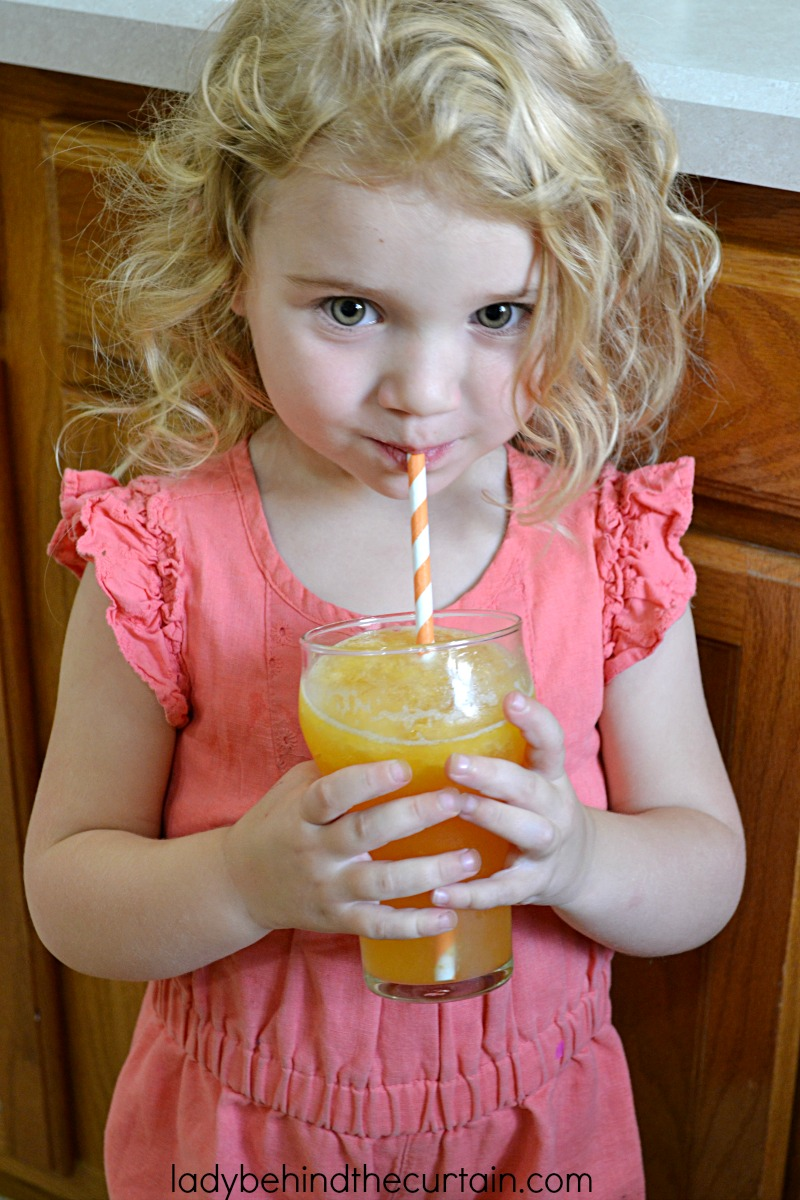 Sparkling Peach Slush Punch