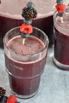 Sparkling Triple Berry Slush Punch