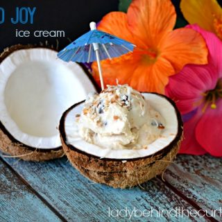 Almond Joy Ice Cream