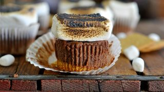 Mini S'more Cheesecakes