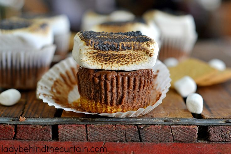 Mini S'more Cheesecakes