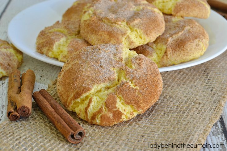Snickerdoodle Cake Mix Cookie Recipe